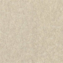 Cartier Taupe Cracked Texture Wallpaper