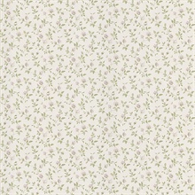 Abigail Lavender Rosebud Trail Wallpaper