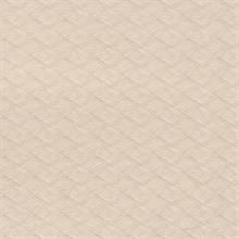 Acoustic Taupe Waves Texture Wallpaper