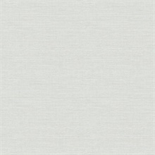 Agave Light Blue Faux Grasscloth