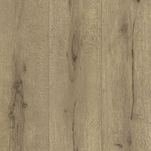 Appalachian Light Brown Wooden Planks