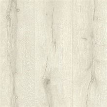 Appalachian Off-White Wooden Planks