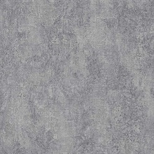 Ariana Pewter Texture