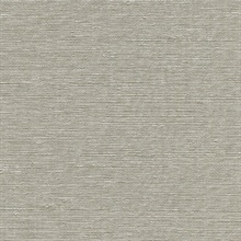 Aspero Light Grey Faux Silk