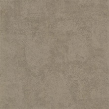 Baird Brown Patina Texture Wallpaper