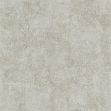 Baird Taupe Patina Texture Wallpaper