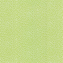 Bambam Green Animal Print Wallpaper