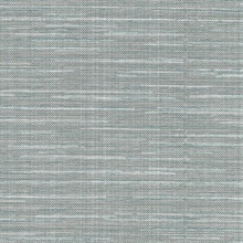 Bay Ridge Blue Linen Texture