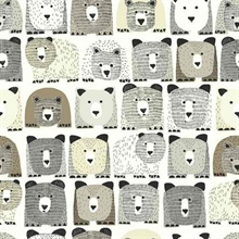 Bears Sidewall