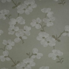 Bebe Light Grey Blossom Wallpaper