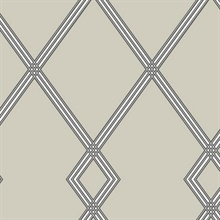 Beige Ribbon Stripe Trellis