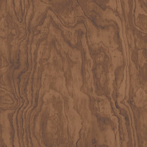 2540 24040 Bentham Brown Plywood Wallpaper Wallpaper