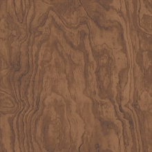Bentham Brown Plywood Wallpaper