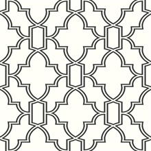 Black and White Tile Trellis