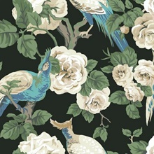 Black, Blue & Cream Garden Plume Wallpaper
