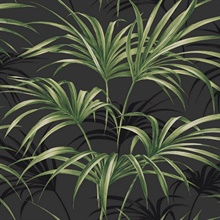 Black & Green Commercial Open Palm Leaf Wallpaper