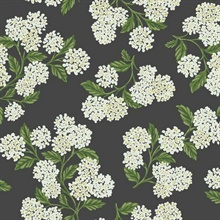 Black, Green & White Hydrangea Floral Rifle Paper Wallpaper