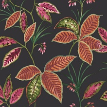 Black, Orange & Coral Commercial Leaves Wallpaper