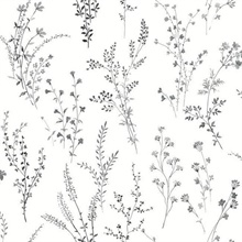 Black & White Wildflower Sprigs Floral Wallpaper