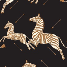Black Zebra Wallpaper
