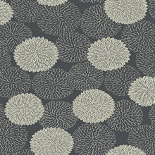 Blithe Charcoal Floral