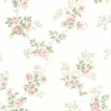 Blossom Pink Rose Trail Wallpaper