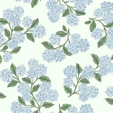 Blue & White Hydrangea Floral Rifle Paper Wallpaper