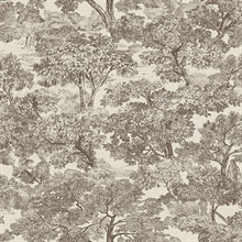 Blyth Brown Toile Wallpaper