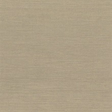 Bo Taupe Grasscloth