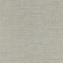 Bohemian Bling Pewter Woven Texture