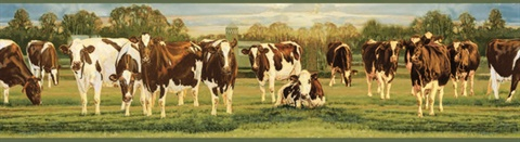 Brown Cow Border