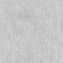 Brubeck Light Grey Distressed Texture