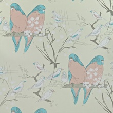 Budgies Salmon Pink & Turquoise