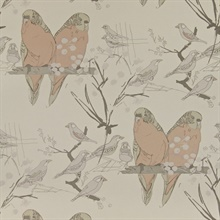Budgies Taupe & Plaster