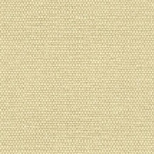 Calypso Indian Hemp Type II 20oz Wallpaper
