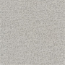 Canon Ball Taupe Splattered Dots Commercial Wallpaper