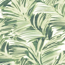 Chaparral Green Fronds Wallpaper
