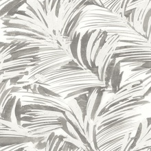 Chaparral Grey Fronds Wallpaper