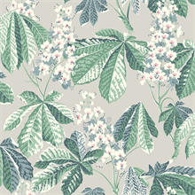 Chestnut Blossom Grey Floral Wallpaper