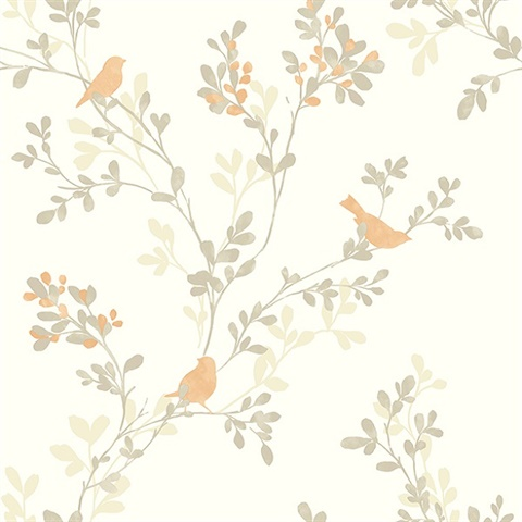 Chirp orange birds trees wallpaper