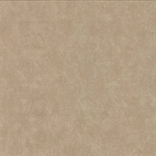 Clegane Light Brown Plaster Texture