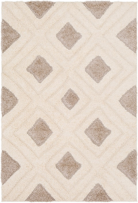 CLG2308 Cut & Loop Shag - Area Rug