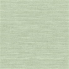 Colicchio Light Green Linen Texture