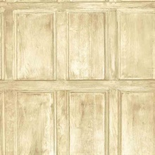 Common Room Beige Wainscoting