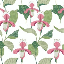 Coral & Green Lady Slipper Floral Wallpaper