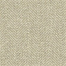 Cozy Chevron Beige