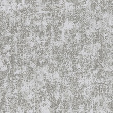 Dagmar White Texture Wallpaper