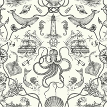 Deep Sea Toile