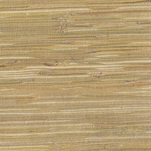 Dhyana Mustard Yellow Grasscloth Wallpaper