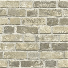 Distressed Neutral Brick